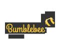 Bumblebee Kids Academy