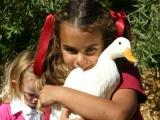Zoo to You - Mobile Petting Farm