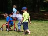 Clever Cats Creche and Farm School - Creche in Durbanville