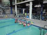 Aquawolf Aquatics Club