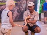 Le Bonheur Reptiles & Adventures