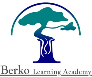 Berko Learning Academy